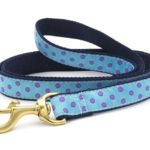 Up Country Blue Purple Dot Lead